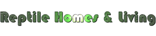 Wilmot Design Suffolk Website Design Suffolk Web Design Suffolk Website Development WordPress Ipswich Website Design Ipswich Website Development Ipswich Web Design Stowmarket Website Design Hadleigh Website Design Sudbury Website Design Suffolk Photo Restoration Ipswich Photo Restoration Suffolk Voiceover Recordings Video Voiceover Recordings Suffolk Responsive Website Design Suffolk SEO html5 WooCommerce Photography repair Photo retouching photo repair