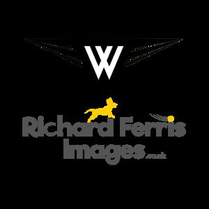 Wilmot Design Ipswich mobile friendly website design Ipswich Website Design Suffolk Website Design